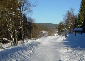 Carretera cerca del Bosque Bávaro