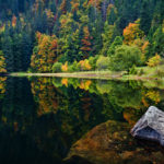 Selva Negra Schwarzwald